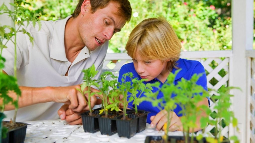 Seeds to Sow & Grow with Kids