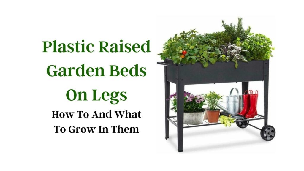 Picture of: Plastic Raised Garden Beds On Legs How To And What To Grow In Them Slick Garden
