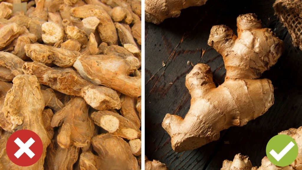 healthy and dry ginger
