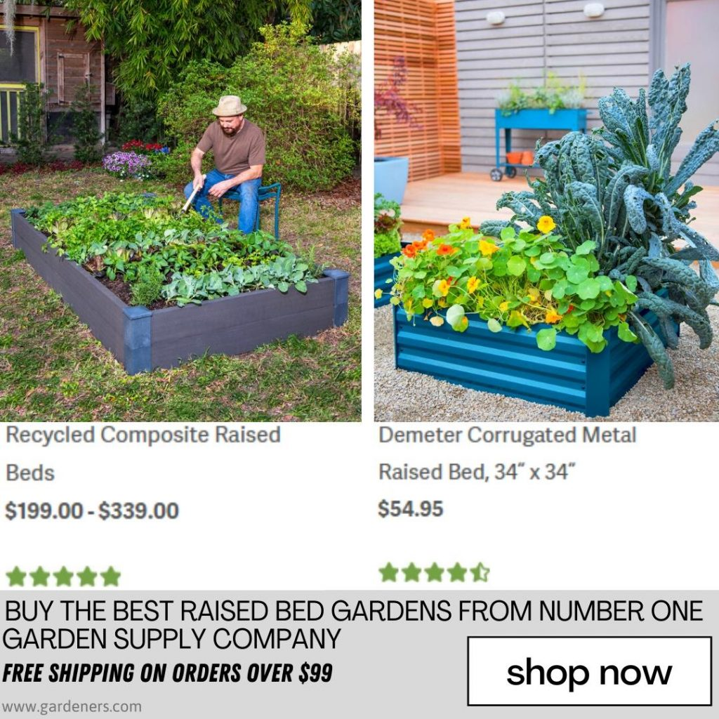 How To Build A Raised Bed Herb Garden