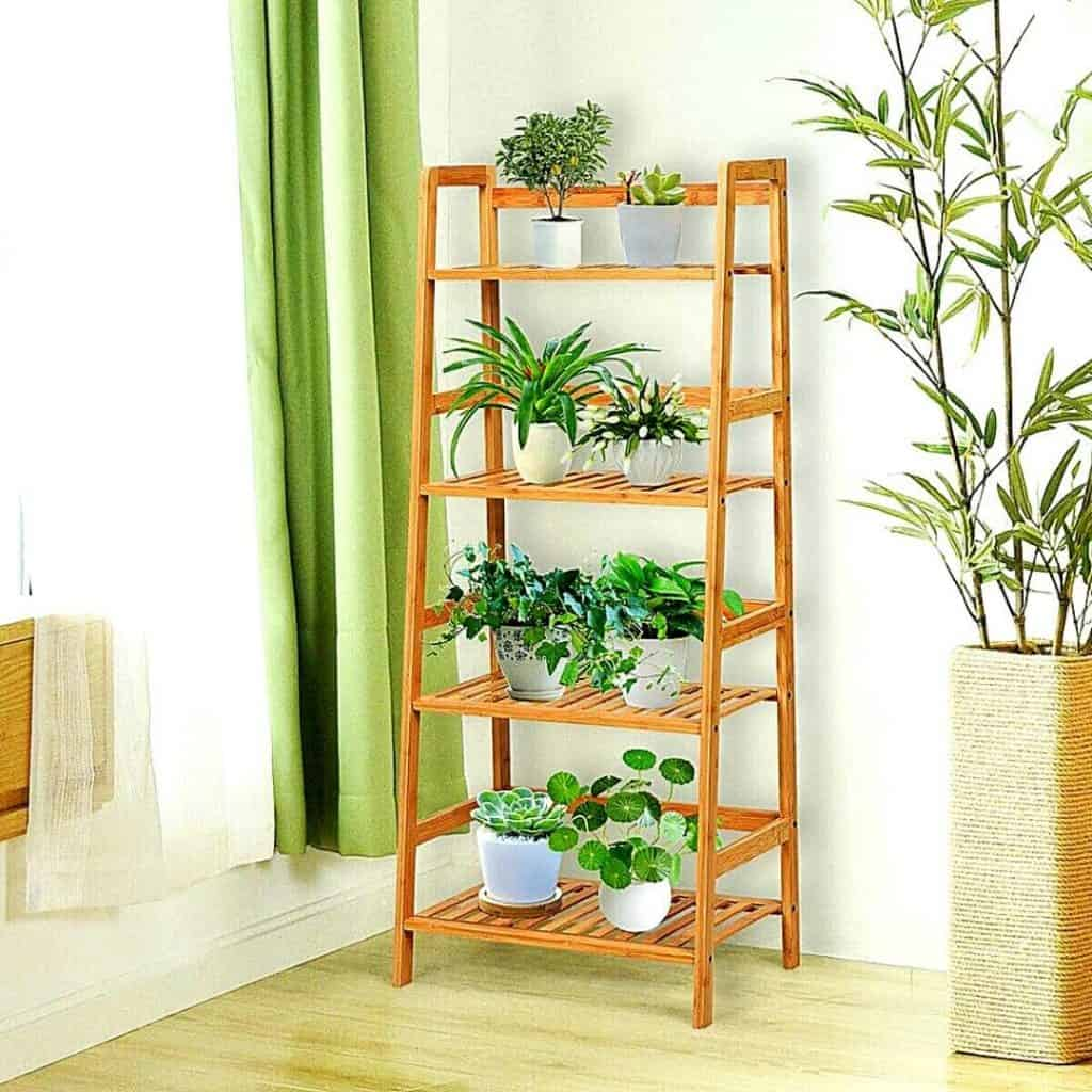 INDOOR PLANT DISPLAY STAND