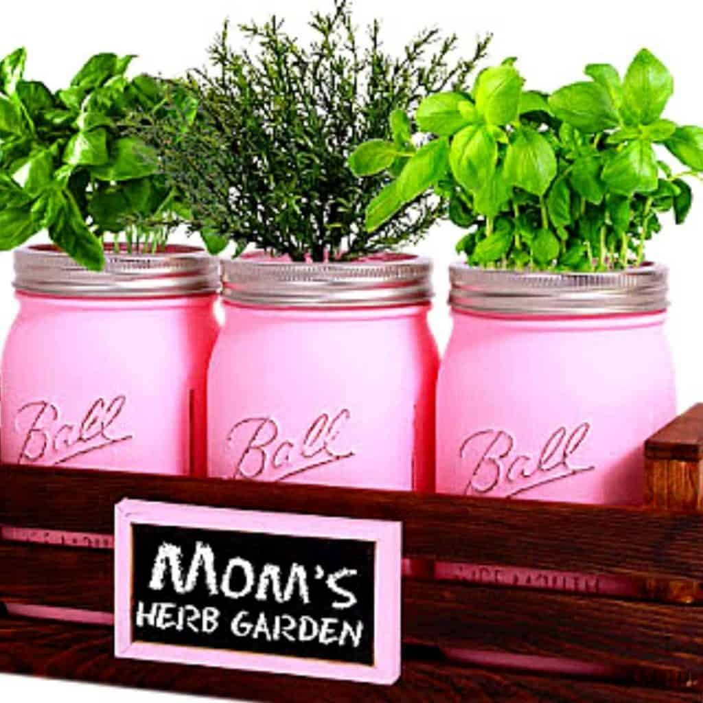 MASON JAR HERB GARDEN WITH WOODEN BOX